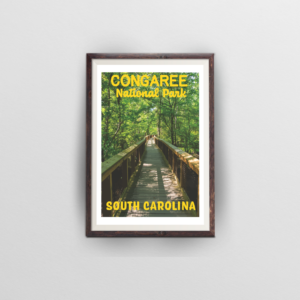 congaree national park South Carolina brown frame white background
