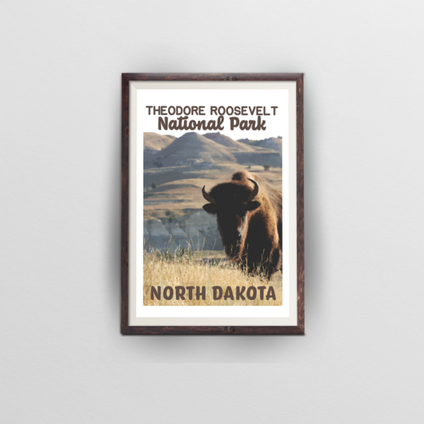 theodore roosevelt national park brown frame white background