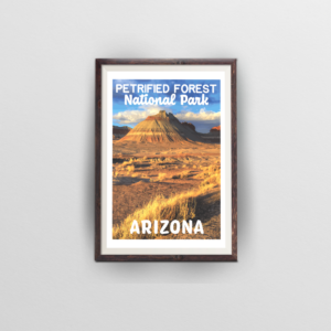 Petrified Forest National Park Poster